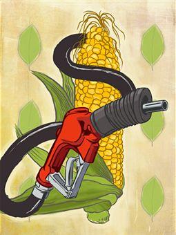 corn-bio-fuel
