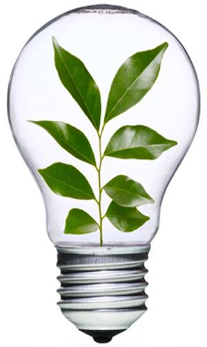 energy-efficient-bulb